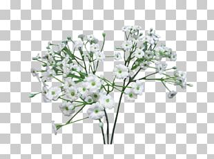 Flower Bouquet Baby's-breath Infant Artificial Flower PNG