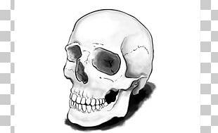 Drawing Skull Calavera Tutorial Art PNG