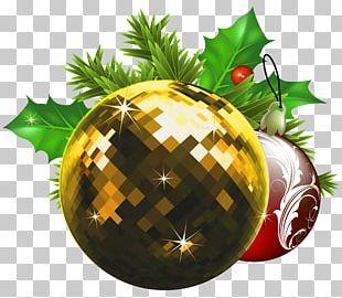 Christmas Ornament Christmas Tree Cat PNG