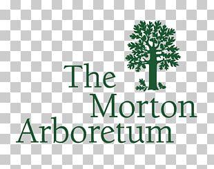 Morton Arboretum Lisle Botanical Garden Tree PNG