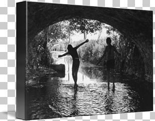 The Silver Star Black And White Frames Photography PNG