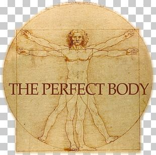 Vitruvian Man Gallerie Dell'Accademia St. John The Baptist Drawing Renaissance PNG