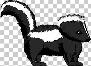 Striped Skunk Whiskers Badger PNG