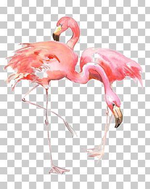 Flamingo AllPosters.com Printing Painting Printmaking PNG