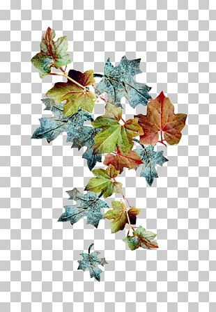 Christmas Ornament Leaf Branching PNG