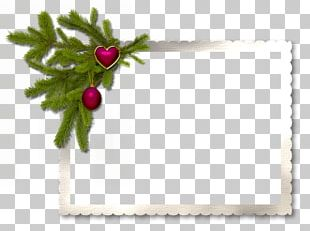 Frames Christmas Decoration New Year Birthday PNG