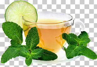 Maghrebi Mint Tea Green Tea Drink PNG