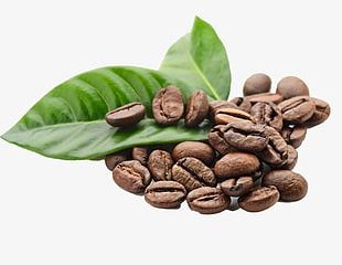 Coffee Beans Element PNG