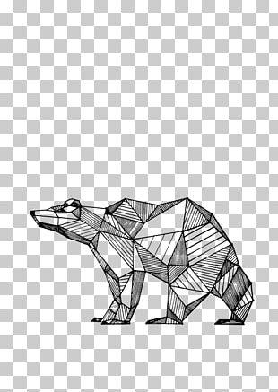 Drawing Line Art Bear Animal PNG