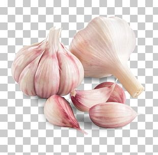 Garlic Shallot Vegetable Chives Human Papillomavirus Infection PNG