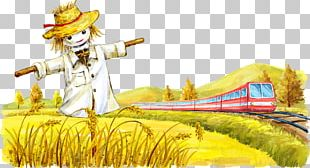 Train Rail Transport Paddy Field Scarecrow Oryza Sativa PNG