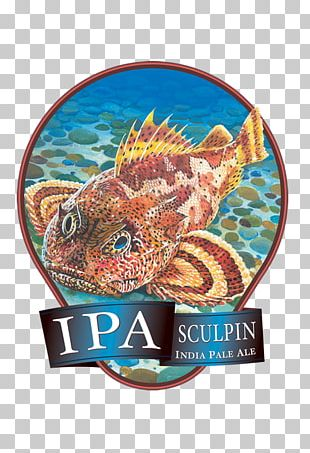 India Pale Ale Beer Ballast Point PNG