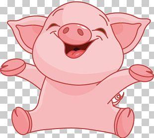 Domestic Pig Cartoon PNG
