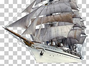 Catamaran Sailing Sailing Ship Sailboat PNG