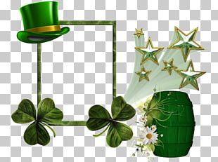 Saint Patrick's Day March 17 Party Woman PNG