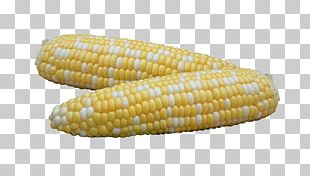 Corn On The Cob Sweet Corn Maize Illinois Fire Service Institute Side Dish PNG