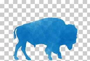 African Buffalo American Bison Paper T-shirt PNG