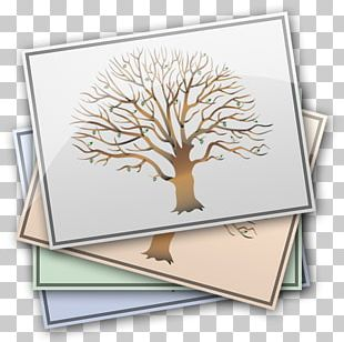 Genealogy MacFamilyTree Your Family Tree PNG