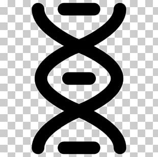 DNA Molecular Structure Of Nucleic Acids: A Structure For Deoxyribose Nucleic Acid Medical Biology Genetics PNG