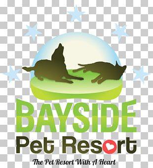 Sarasota Bayside Pet Resort Dog Pet Sitting Cat PNG