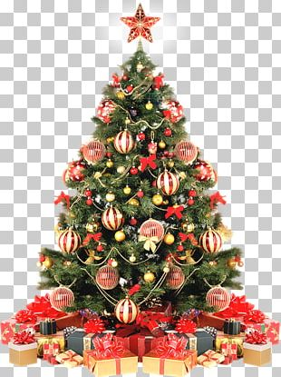 Christmas Decoration Christmas Tree Christmas Ornament Gift PNG