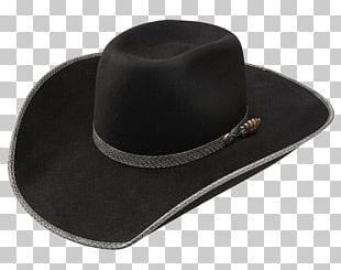 5fe1357fd3a91 Cowboy Hat Bird Beaver Hat Edwardian Era PNG