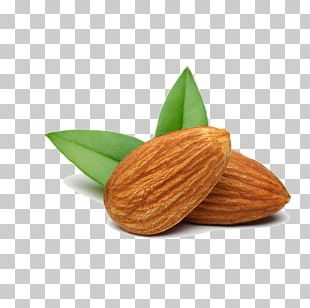 Nut Almond Food Apricot Kernel PNG