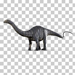 Jurassic World Evolution Dinosaur Park Apatosaurus Brontosaurus Diplodocus PNG