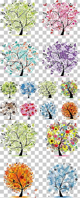 The Four Seasons Tree Spring Winter PNG