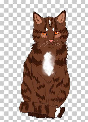American Wirehair Manx Cat California Spangled European Shorthair Whiskers PNG