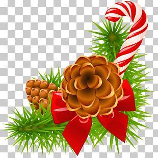 Santa Claus Christmas And Holiday Season Euclidean PNG