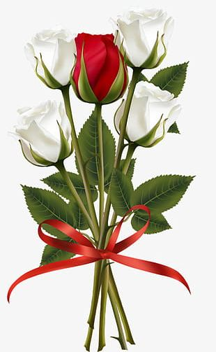 A Bouquet Of Red And White Roses PNG