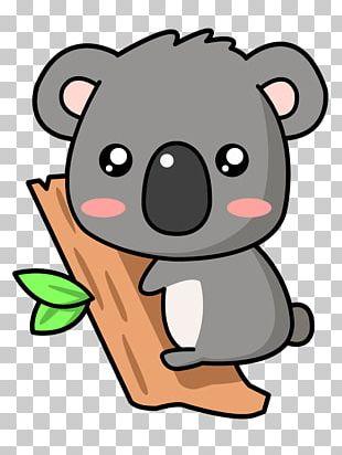 Baby Koala Cuteness Drawing PNG