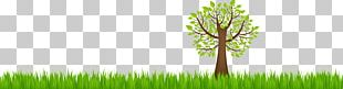 Earth Natural Environment Ecology PNG
