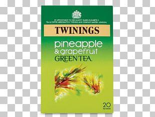 Green Tea Maghrebi Mint Tea Earl Grey Tea Iced Tea PNG