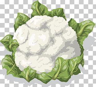 Cauliflower Vegetable Food PNG