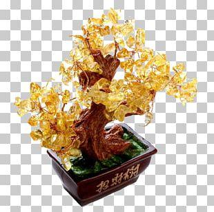 Tree Bonsai Luck PNG
