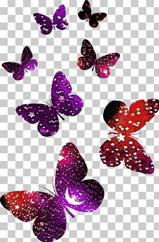 Butterfly Logo PNG