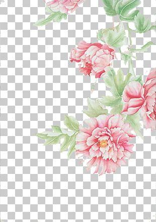 Floral Design Cut Flowers Centifolia Roses PNG