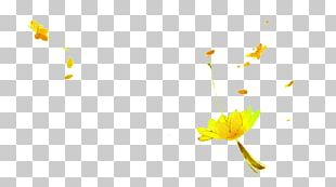 Floating Golden Frame Leaf PNG
