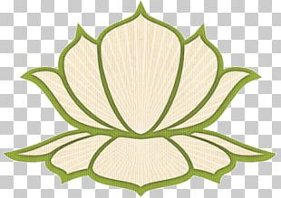 Massage Shiatsu Ayurveda Spirituality Kirei Centre D'estètica PNG