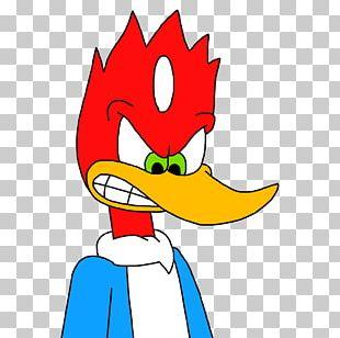 Woody Woodpecker Cartoon Universal S Drawing PNG