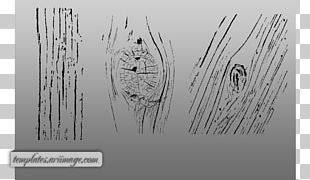 Paper Drawing Graphic Design Wood Grain PNG