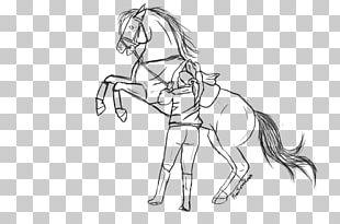 Mane Bridle Mustang Colt Pack Animal PNG