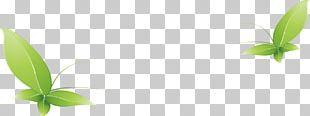 Vecteur Computer File PNG