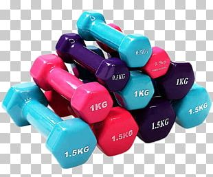 Dumbbell Physical Exercise Physical Fitness Bodybuilding Barbell PNG