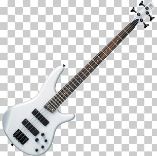 Bass Guitar Ibanez Musical Instruments Double Bass PNG