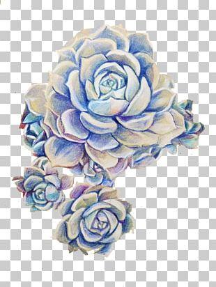 Succulent Plant Purple Cut Flowers PNG