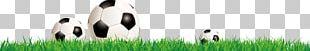 Brand Logo Grasses PNG
