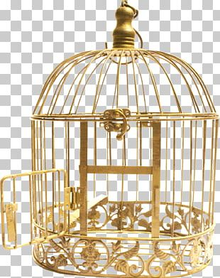 Cell Bird Cage PNG